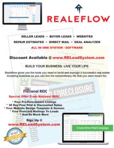 RealeFlow Flyer New